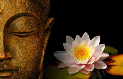 בודהיזם והתרופה לסבל במאה ה-21